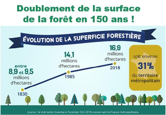 Doublement de la surface de la forêt en 150 ans !